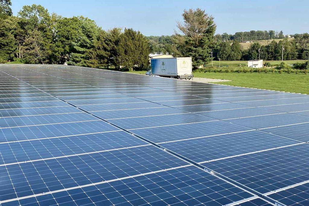 Sycamore International's new solar panel array Courtesy of Sycamore International.