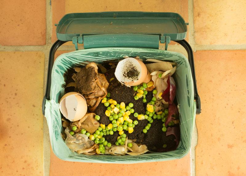 Food Scraps Pail / kay roxby, Shutterstock