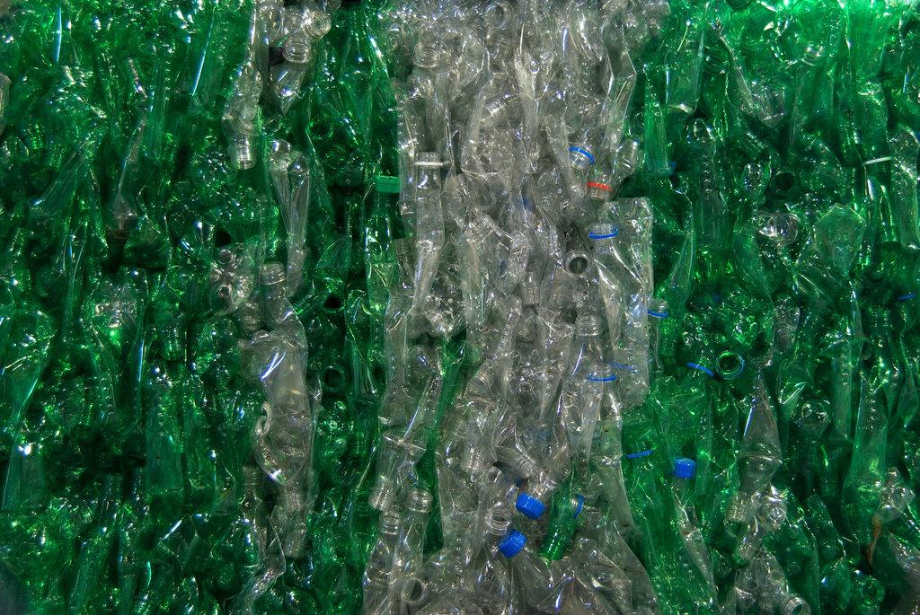 Green Plastic Bale /Shutterstock_26427160_Huguette_Roe