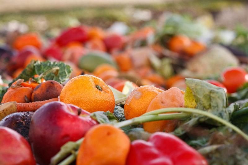 compost / Stefan_Redel, Shutterstock