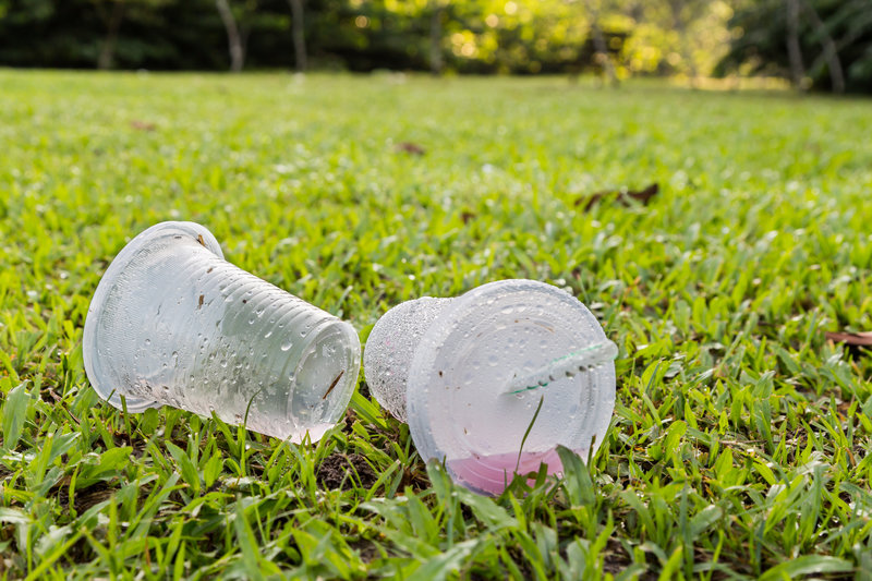 plastic cups / ThamKC, Shutterstock