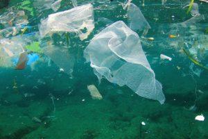 Marine plastics debris