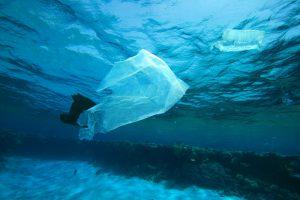 Marine debris plastics