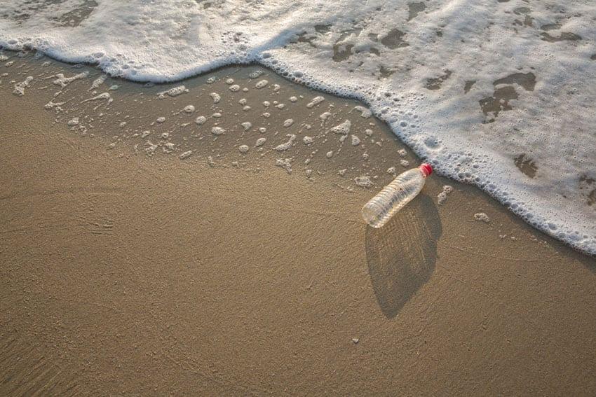 Plastic marine debris.