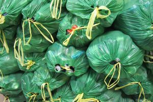Green bags filled with empty bottles and cans for recycling in Oregon.