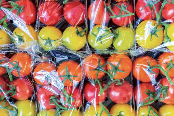 Tomatoes in plastic packaging.