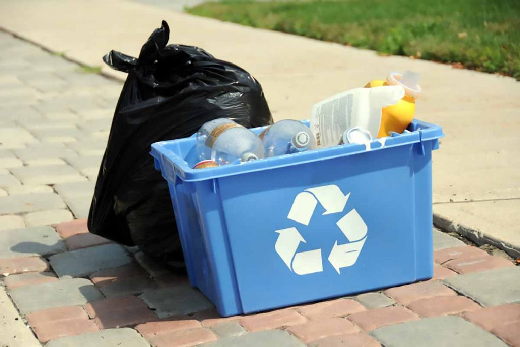 Curbside waste and recycling for collection.