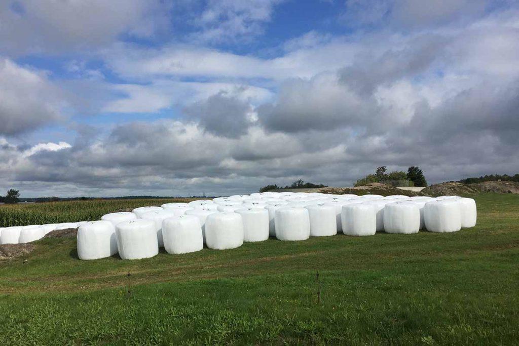 Plastic bale wrap for Cleanfarms.
