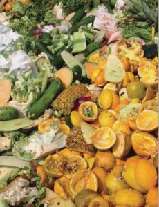 Organics collection, Resource Recycling 2016