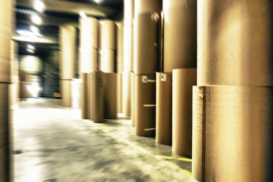 Rolls of kraft paper at a paper mill.