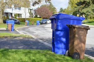 Curbside waste and recycling carts.