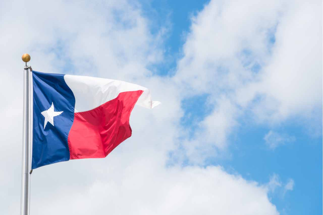 State of Texas flag flying against a sky background.