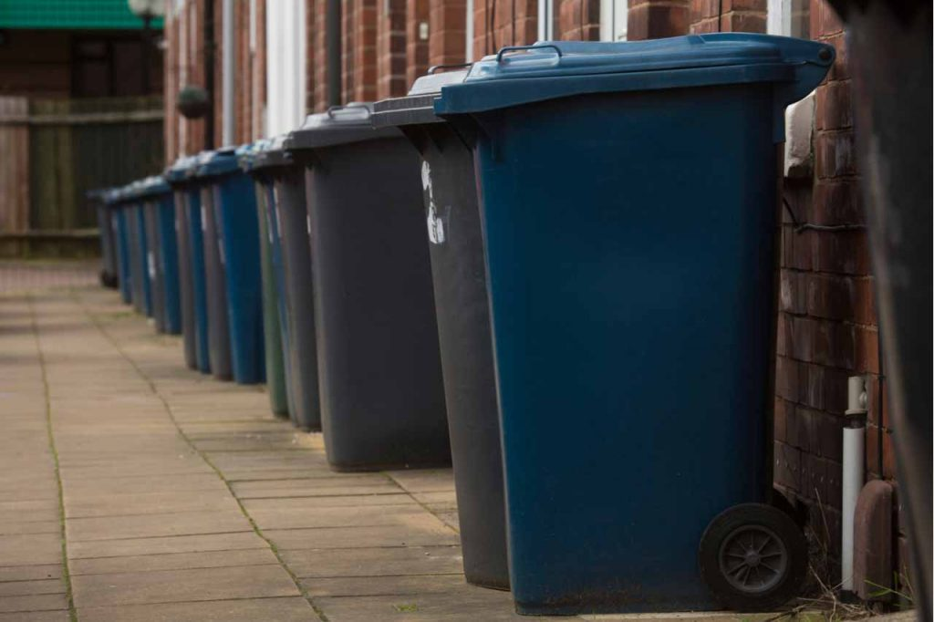 Waste and recycling bins outside of homes.