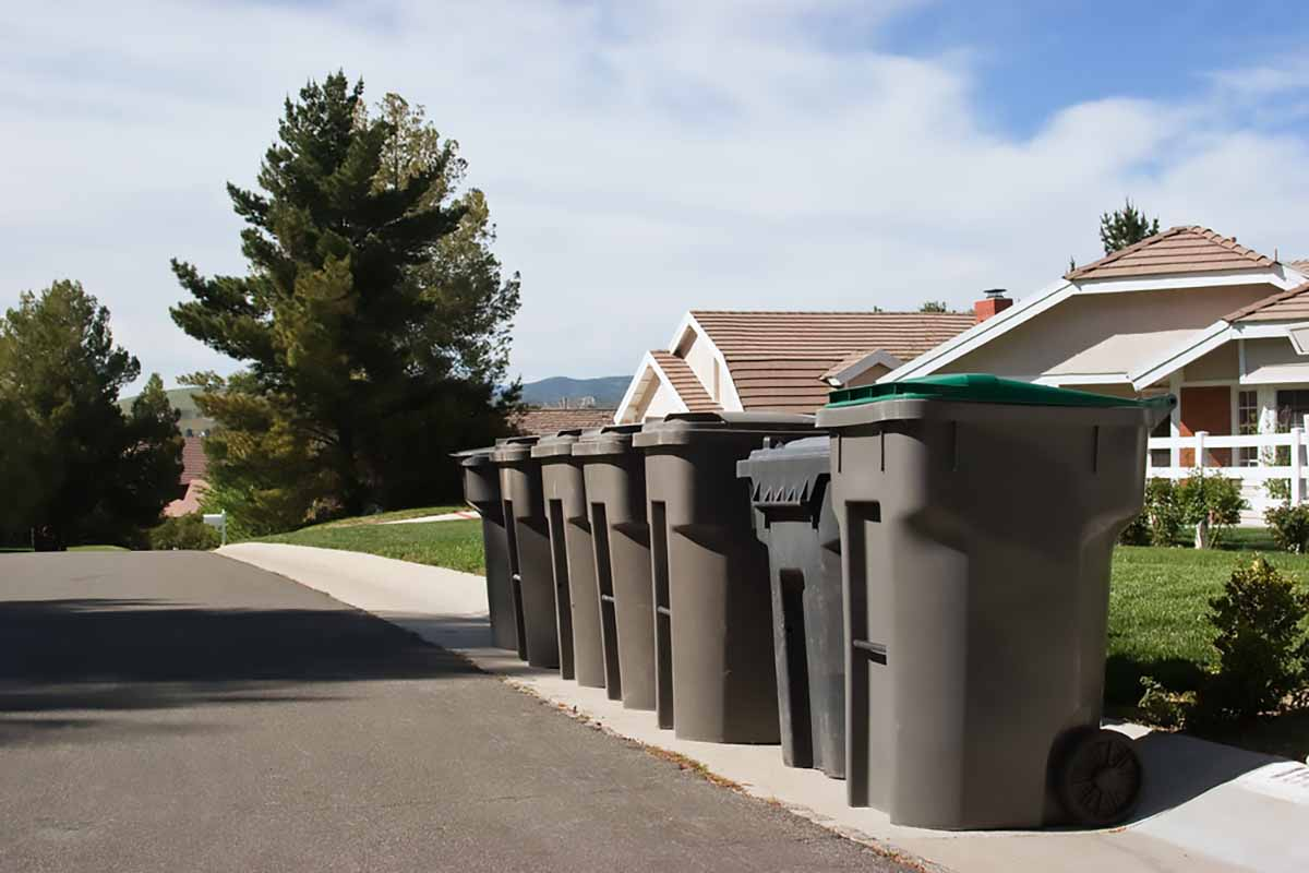 Waste and recycling bins on a residential street.