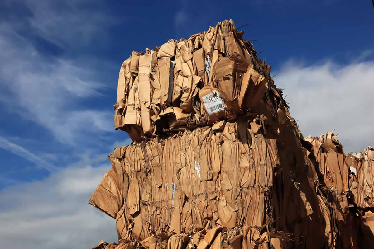 Baled OCC stacked for recycling.